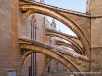 Los arbotantes servían para transmitir los empujes del claristorio —parte elevada de la nave central donde se coloca el segundo orden de vidrieras— a los contrafuertes, lo que permitió que las catedrales góticas ganaran altura con respecto a sus precedentes románicas