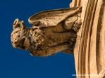El grifo, león alado que decora una de las gárgolas. Como puede verse en la faz del elemento, la acción del aire salino deteriora la blanda piedra de marés con el que se labró.
