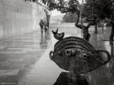Fund_Joan_Miro